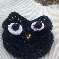 Crazy Owl Washcloth