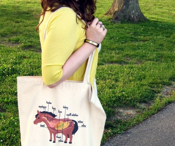 The Plaid Pony Pony Anatomy Tote Online Store Powered By Storenvy