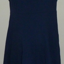 Navy Blue Dress-Lands End Size 14  CLSR1
