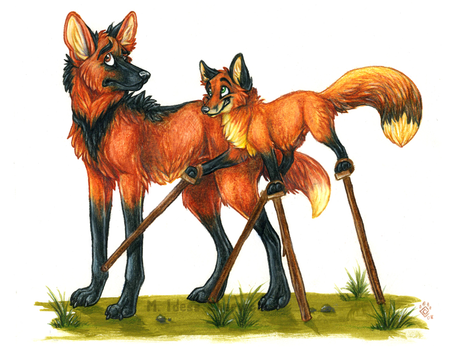 Fox_on_stilts_by_idess_original