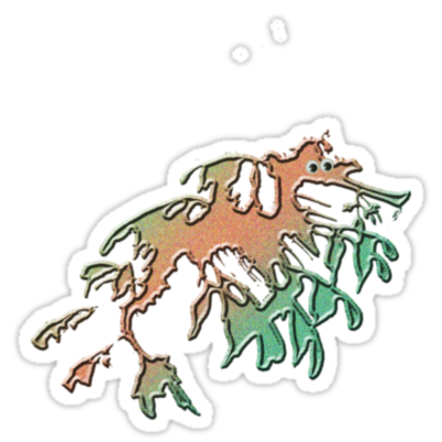 Weedy sea dragon sticker