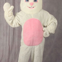 Bunny Costume with Mascot Head