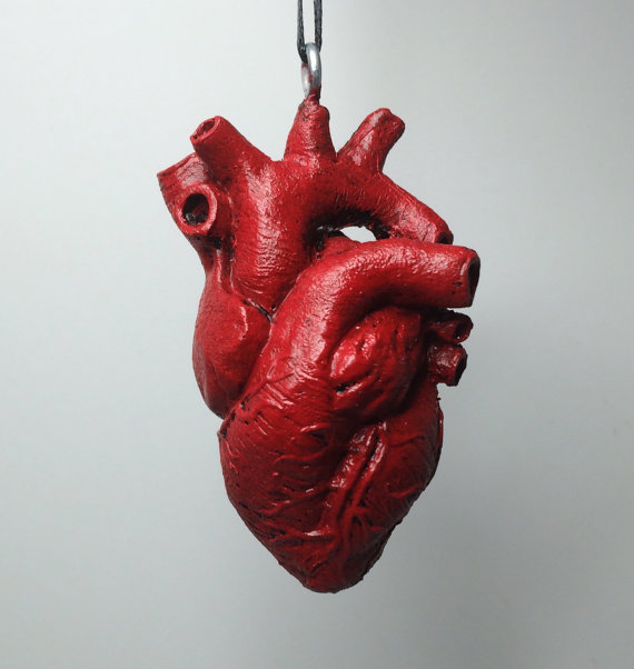 anatomical heart ornament · l'esquelet · online store powered by, Human Body