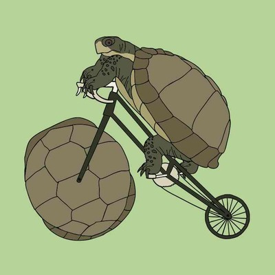 Tortoise riding bike with tortoise shell wheel 5x5 print