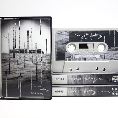 Insect factory 'flickering' cassette (ad185)