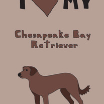 Chesapeake Bay Retriever, 5x7 print