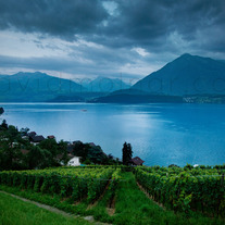 P024 Lake Thun Switzerland