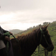 Horse & Rider: Public Screening License - Thumbnail 1