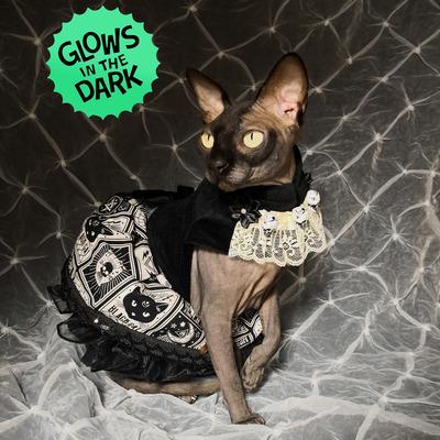 Diva dress- tarot cat glow-in-the-dark!