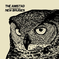 New Bruises / the Amistad import split 7""