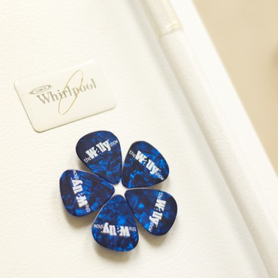 Guitar pick flower magnet