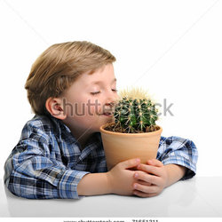 Stock-photo-little-boy-hugging-his-houseplant-cactus-isolated-on-white-71651311
