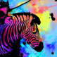 Art-colors-pretty-zebra-favim.com-287697_large
