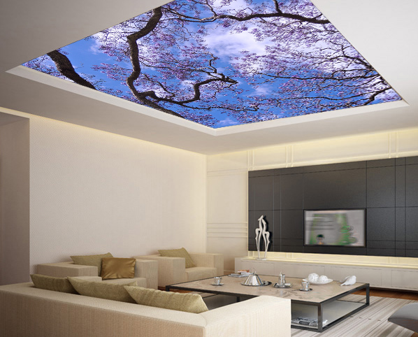 Ceiling Sticker Mural Cherry Blossom Flowering Trees Sky